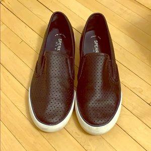 Women's Seaside Perforated Varsity Sneaker